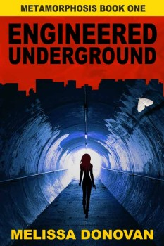 engineered underground