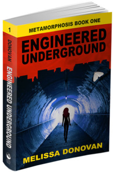 engineered underground